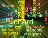 Chard multilanguage wordcloud background concept glowing — Stock Photo
