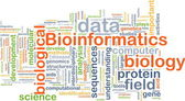 Bioinformatics background concept — Stock Photo