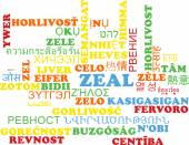 Zeal multilanguage wordcloud background concept — Stock fotografie