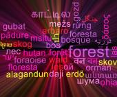 Forest multilanguage wordcloud background concept glowing — Stock Photo