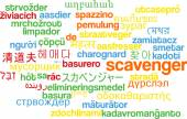 Scavenger multilanguage wordcloud background concept — Stock Photo