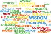 Wisdom multilanguage wordcloud background concept — Stock Photo