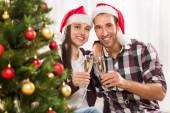 Celebrating Christmas or New Year — Foto de Stock