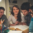 Students Learning — Stock Photo #67532281