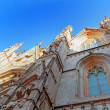 Cathedral of Holy Cross — Stock Photo #55695293