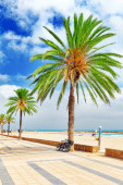 Beach in Spain. — Stock Photo
