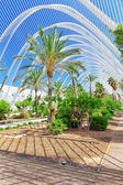 Landscaped walk tropic park — Stock Photo