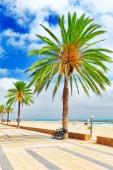 прибрежный пляж в испании — Стоковое фото