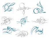 Set of exquisite design elements. — Stock Vector