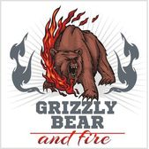Grizzly bear and fire, emblem elements - vector illustration — Wektor stockowy