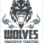 Head Wolf -  North American ornamental style. — Stock Vector #63740369