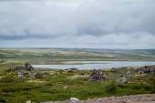 Northern landscape — Stock Photo