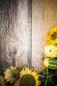 Autumn background pumpkins board — Stock Photo