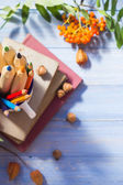 Pencils books concept back school autumn fruit — Stockfoto