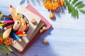 Pencils books concept back school autumn fruit — Stock Photo