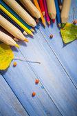 Vintage background colored pencils autumn fruits blue table — Stock Photo