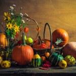 Halloween autumn fall pumpkin setting table still life vintage — Stock Photo #52452775
