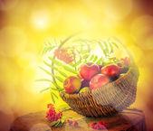 A basket full apples rowan sunset — Stock Photo