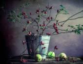Mele di biancospino rami vita tranquilla — Foto Stock