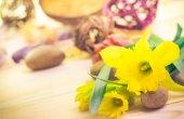 Spa setting flower Zen stones — Stock Photo
