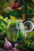 Jar pickles other ingredients pickling — Stockfoto