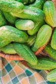 Lots fresh green cucumbers wooden table — Stock Photo