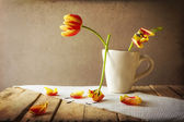 Transience Still life tulips cup petals — Stock Photo