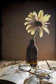 Still life white gerbera glasses book — Stock Photo