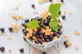 Fruits white black currants saucer wooden table Summer harvest — Stock Photo
