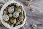 Small quail eggs wooden table dish  scattered database — Stock Photo