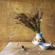 Still life with bouquet dried wild grasses worm — Stock fotografie #70112311