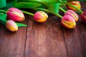 Art abstract background spring tulips wooden design — Стоковое фото