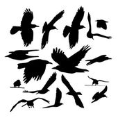 Flying birds silhouettes — Stock Vector