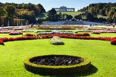 在维也纳花园 — 图库照片