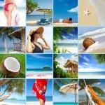 Tropic tropic tropic tropic tropic tropic tropic tropic tropic — Stock Photo #58496933
