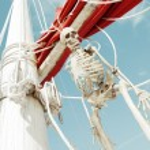 Skeletonskeleton — Stock Photo #64361135