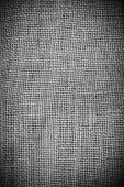 Lien background — Stock Photo