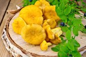 Chanterelles with blueberries on birch billet — Stock Photo