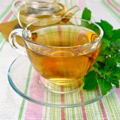 Tea with mint in cup and teapot on tablecloth — Foto Stock