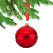 Red decorations Christmas ball hanging on a fir tree branch Isol — Stock Photo #54467507
