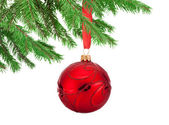 Red decorations Christmas ball hanging on a fir tree branch Isol — Stock Photo