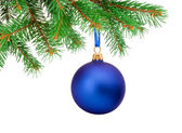 Christmas blue ball hanging on a fir tree branch Isolated on whi — Stock Photo