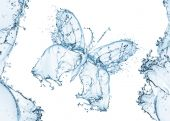 Water splash in form of a butterfly — Stock Photo