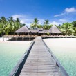 Tropical Beach with Coconut Palm Trees, panoramic view — 图库照片 #58640119