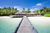Tropical Beach with Coconut Palm Trees, panoramic view — Stock Photo