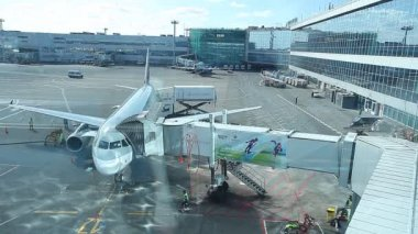 Plane in the Domodedovo airport — Stockvideo