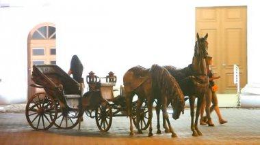 Sculpture of horses at the Minsk City Hall — Стоковое видео