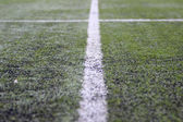 Soccer field with white line — Stock Photo