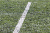 Soccer field with white line — Foto de Stock