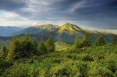 Morgon i bergen — Stockfoto